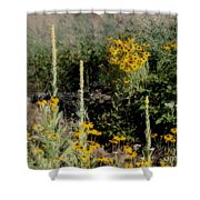 Symphony Of Summer Shower Curtain