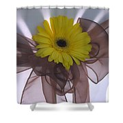 T And T 5 Shower Curtain