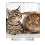 Tabby Kitten With Rabbit Shower Curtain