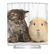 Tabby Kitten With Yellow Guinea Pig Shower Curtain