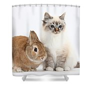 Tabby-point Birman Cat And Rabbit Shower Curtain