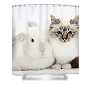 Tabby-point Birman Cat And White Rabbit Shower Curtain