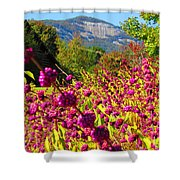 Table Rock Shower Curtain