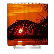 Take Me Away Shower Curtain