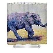 Taking A Walk Shower Curtain