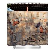 Taliesin Entry - Arizona Shower Curtain