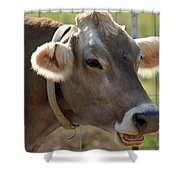Talking Cow Shower Curtain