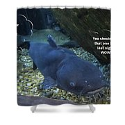 Talking Fish Shower Curtain