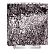 Tall Grasses Shower Curtain