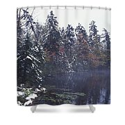 Tall Pines By A Lake Shower Curtain by David Chapman