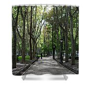 Tall Trees Of Madrid Shower Curtain