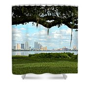 Tampa Skyline Through Old Oak Shower Curtain