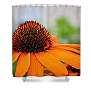 Tangerine Summer Shower Curtain