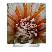Tangerine Tinged Shower Curtain