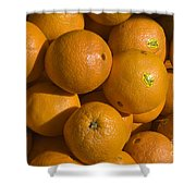 Tangerines Shower Curtain by Tim Mulina
