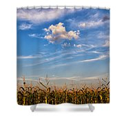Tassels And Sky Shower Curtain