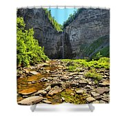 Taughannock Falls Canyon Shower Curtain
