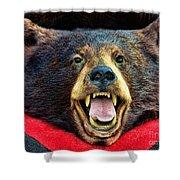 Taxidermy -  Black Bear Shower Curtain