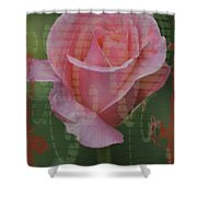 Tea Rose - Asia Series Shower Curtain