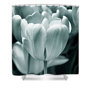 Teal Luminous Tulip Flowers Shower Curtain