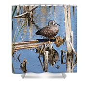 Teal Standing On One Leg Shower Curtain