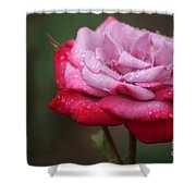 Tears From Heaven Shower Curtain