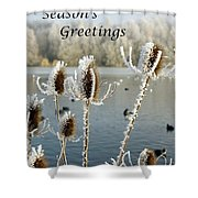 Teasel With Frost Shower Curtain