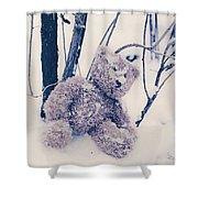 Teddy In Snow Shower Curtain