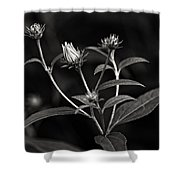 Teenagers Monochrome Shower Curtain