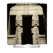 Temple Of Hathor Shower Curtain