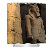 Temple Of Luxor  Egypt Shower Curtain