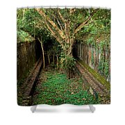 Temple Overgrown By The Jungle Shower Curtain