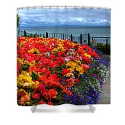 Tenby In Bloom Shower Curtain