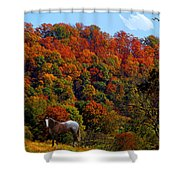 Tennessee Fall Shower Curtain
