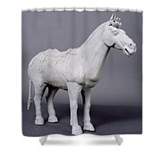 Terracotta Horse Shower Curtain