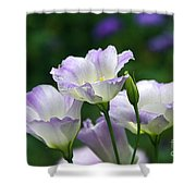 Texas Bluebell And Turquoise Visitor Shower Curtain