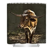 Texas Longhorn # 4 Shower Curtain