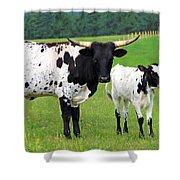 Texas Longhorn Cow And Calf Shower Curtain by Karon Melillo DeVega