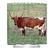 Texas Longhorn Shower Curtain