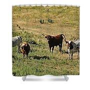 Texas Longhorns Panoramic Shower Curtain