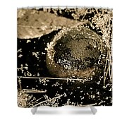 Texture Seeping Shower Curtain
