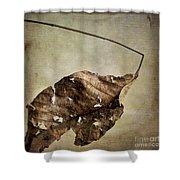 Textured Leaf Shower Curtain