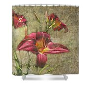 Textured Red Daylilies Shower Curtain