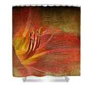 Textured Red Daylily Shower Curtain