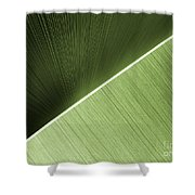 Patterns And Colors. Green. Shower Curtain