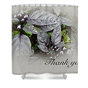 Thank You Card - Silver Leaves And Berries Shower Curtain