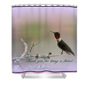 Thank You Cards Shower Curtain