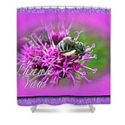 Thank You Greeting Card - Bumblebee On Ironweed Shower Curtain