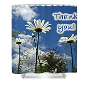 Thank You Greeting Card - Oxeye Daisy Wildflowers Shower Curtain