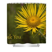 Thank You Yellow Aster Shower Curtain